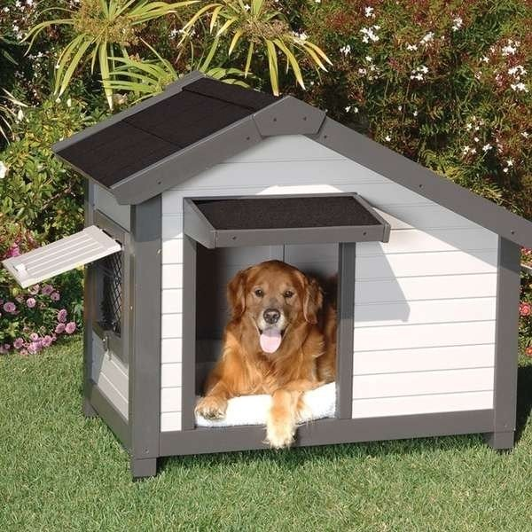 casette di legno per cani